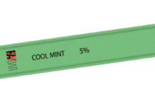 Cool Mint Flavbar V1 Disposable Pod Device by FLAVBAR Review